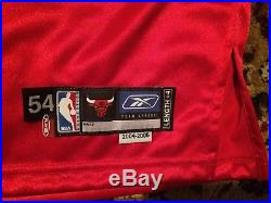2004-05 Luol Deng Chicago Bulls Game Issued Autograhed Jersey